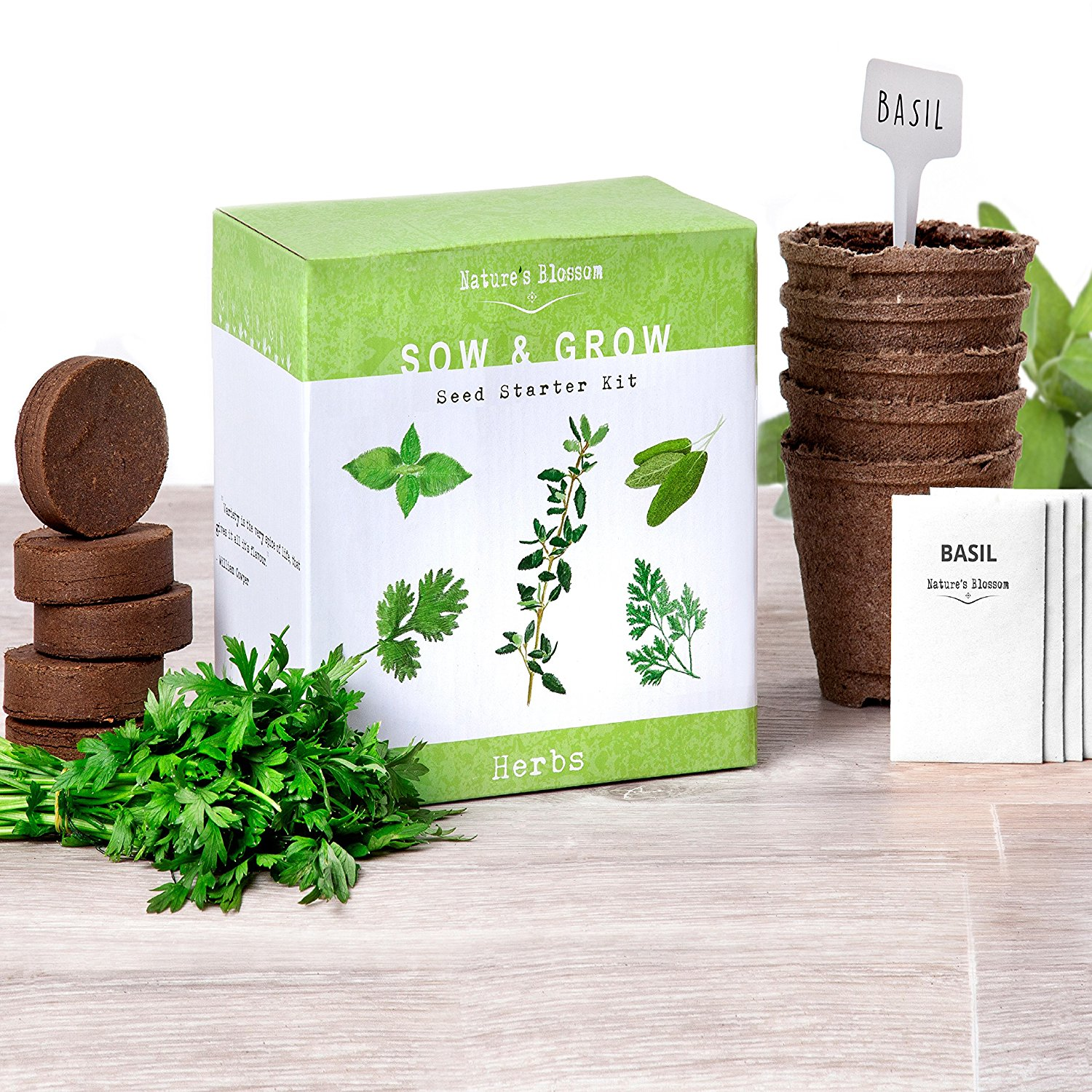indoor herb garden kit herbgarden your source for herb gardening 28782